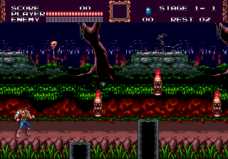 Castlevania: The New Gene…